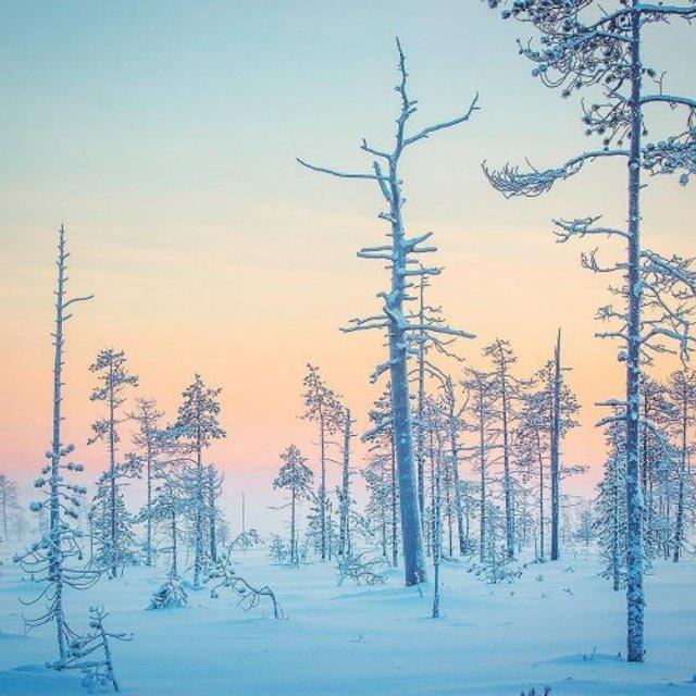 Фотограф показав найказковіше місце на Землі - фото 339353