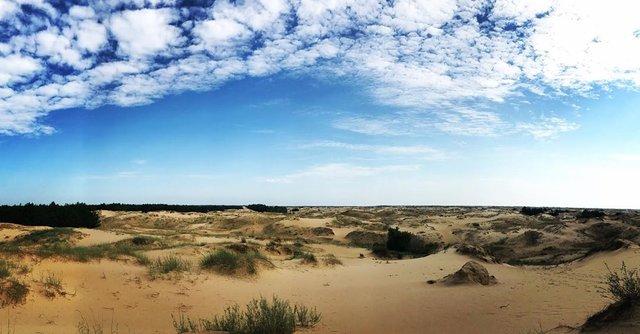 Олешківські піски – українська Сахара: як добратися та що варто знати про пустелю - фото 339457