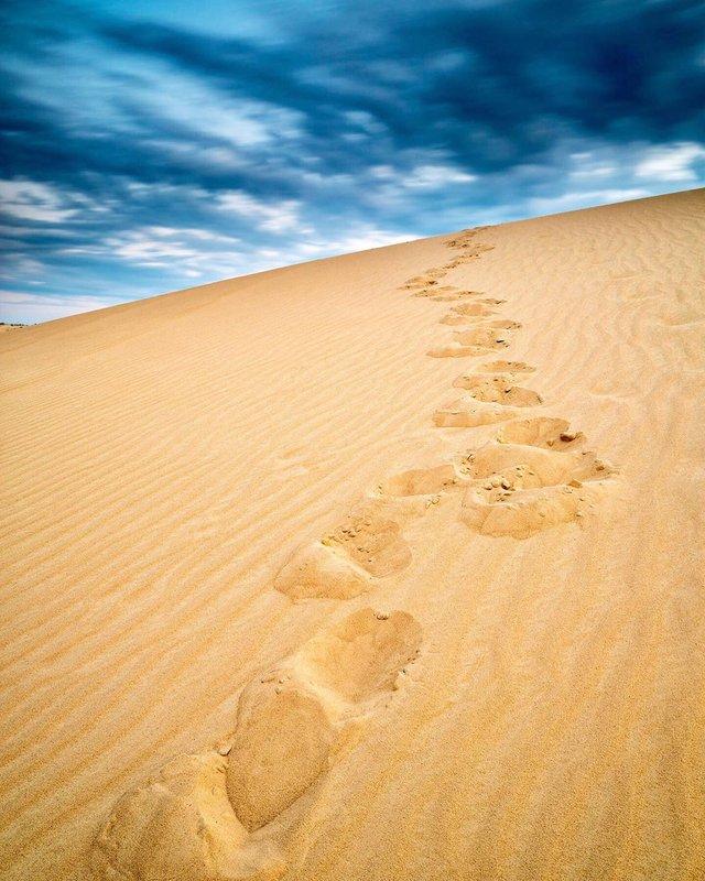 Олешківські піски – українська Сахара: як добратися та що варто знати про пустелю - фото 339459