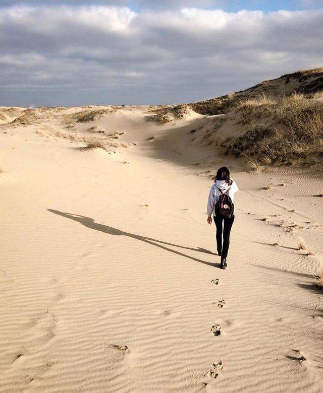 Олешківські піски – українська Сахара: як добратися та що варто знати про пустелю - фото 339462