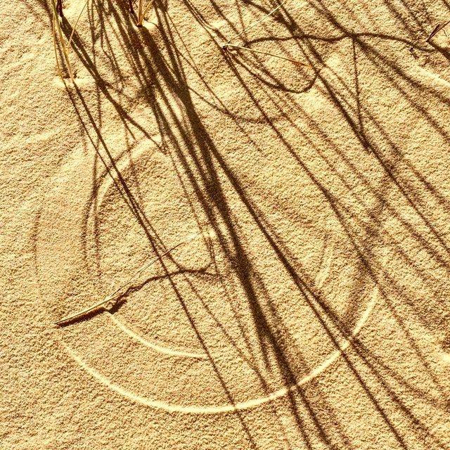 Олешківські піски – українська Сахара: як добратися та що варто знати про пустелю - фото 339464