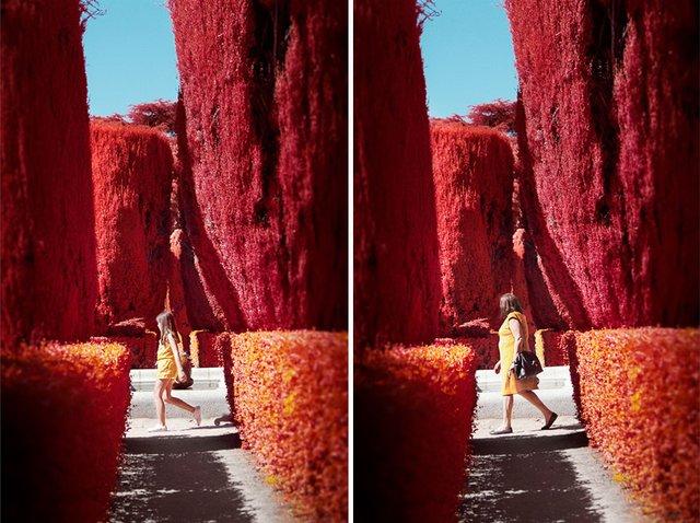 Француз показав інфрачервоний Мадрид: вражаючі фото - фото 339575
