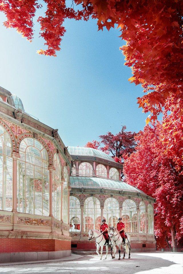Француз показав інфрачервоний Мадрид: вражаючі фото - фото 339576
