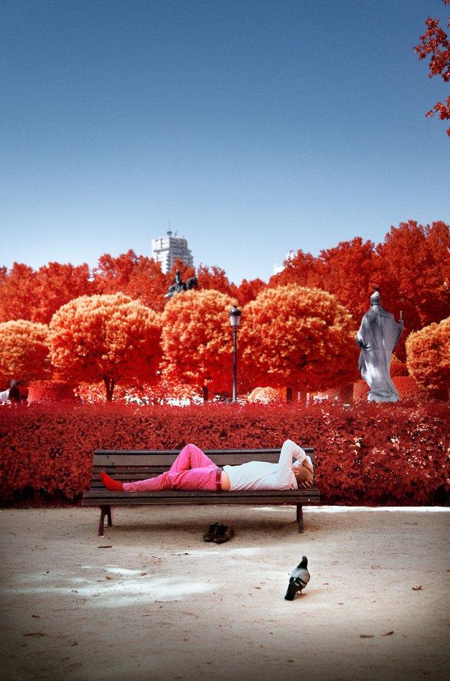 Француз показав інфрачервоний Мадрид: вражаючі фото - фото 339584