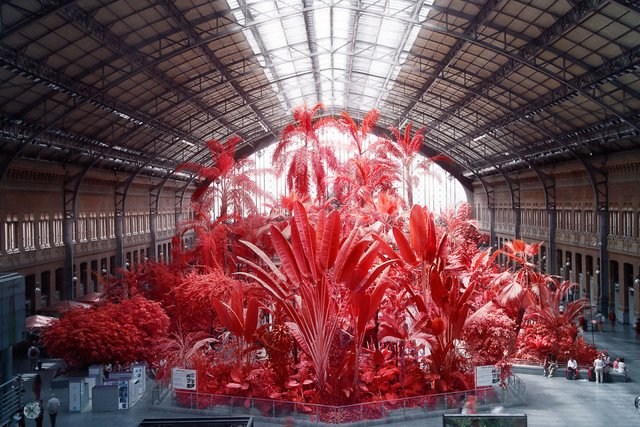 Француз показав інфрачервоний Мадрид: вражаючі фото - фото 339585