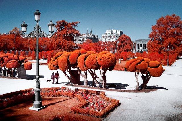 Француз показав інфрачервоний Мадрид: вражаючі фото - фото 339587