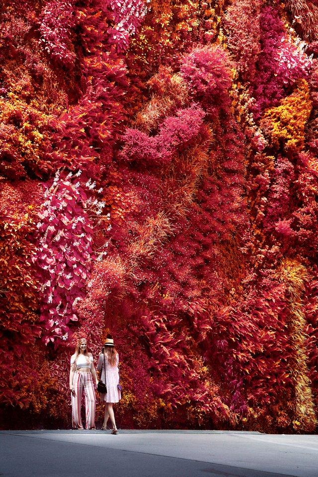 Француз показав інфрачервоний Мадрид: вражаючі фото - фото 339590