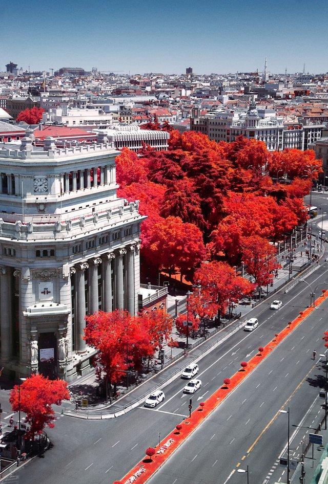 Француз показав інфрачервоний Мадрид: вражаючі фото - фото 339592