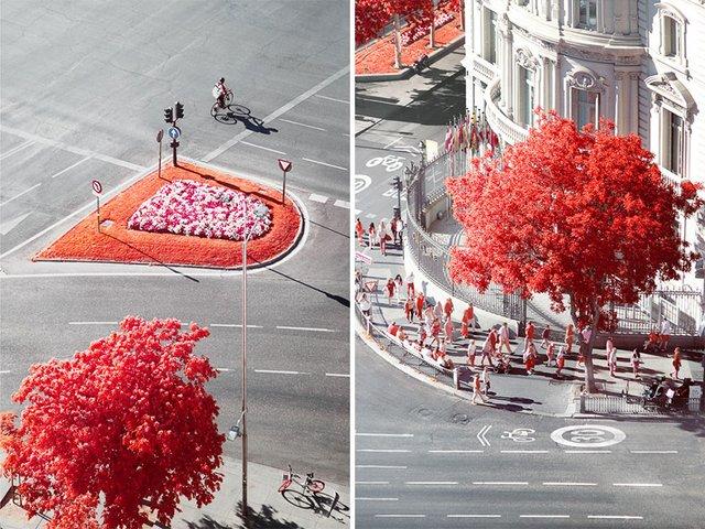Француз показав інфрачервоний Мадрид: вражаючі фото - фото 339593