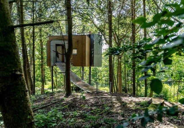 У Данії відкрили перший готельний номер на дереві - фото 339623