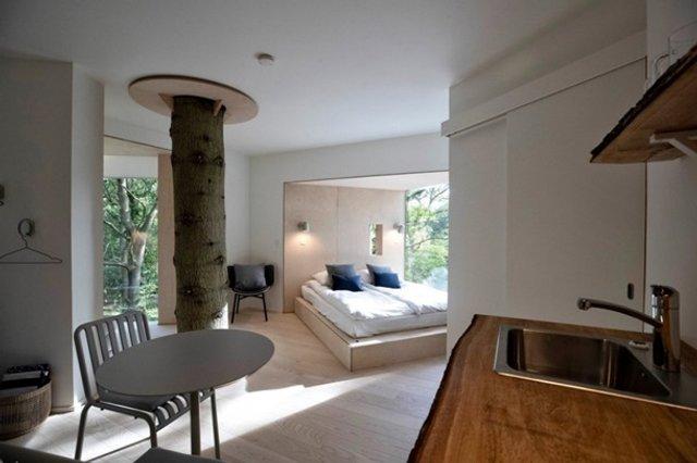 У Данії відкрили перший готельний номер на дереві - фото 339624