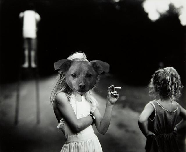 Цей бездомний песик став зіркою Vogue завдяки Аріані Гранде - фото 340236