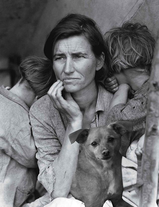 Цей бездомний песик став зіркою Vogue завдяки Аріані Гранде - фото 340243