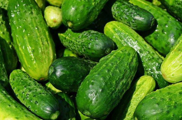 Як приготувати малосольні огірки: швидкі покрокові рецепти засолювання - фото 340352