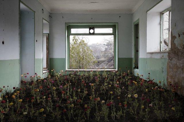 Природа забирає своє: вражаючі фото занедбаних споруд столиці Ірану - фото 342355