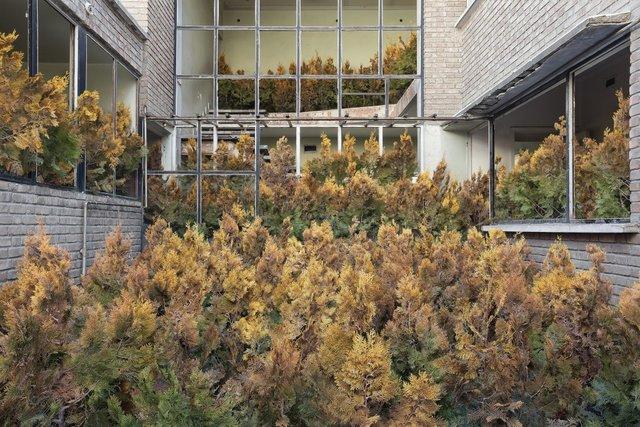 Природа забирає своє: вражаючі фото занедбаних споруд столиці Ірану - фото 342359