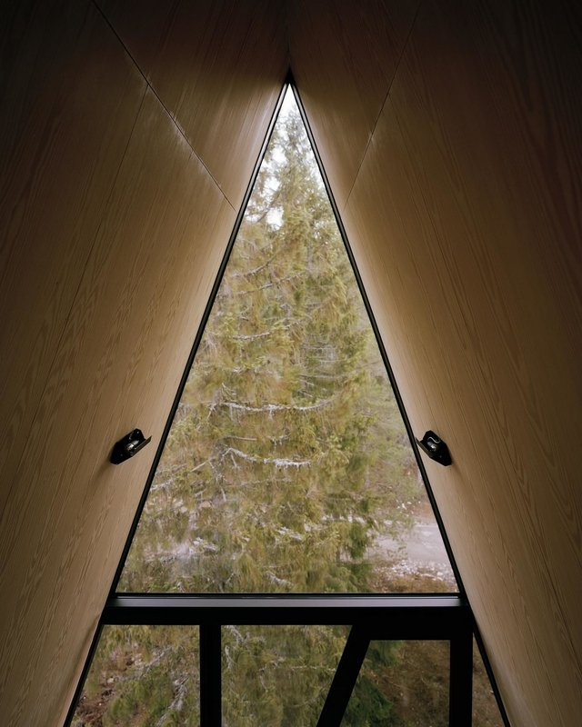 Посеред лісу в Норвегії з'явились ідеальні будиночки для інтровертів: фото - фото 342807