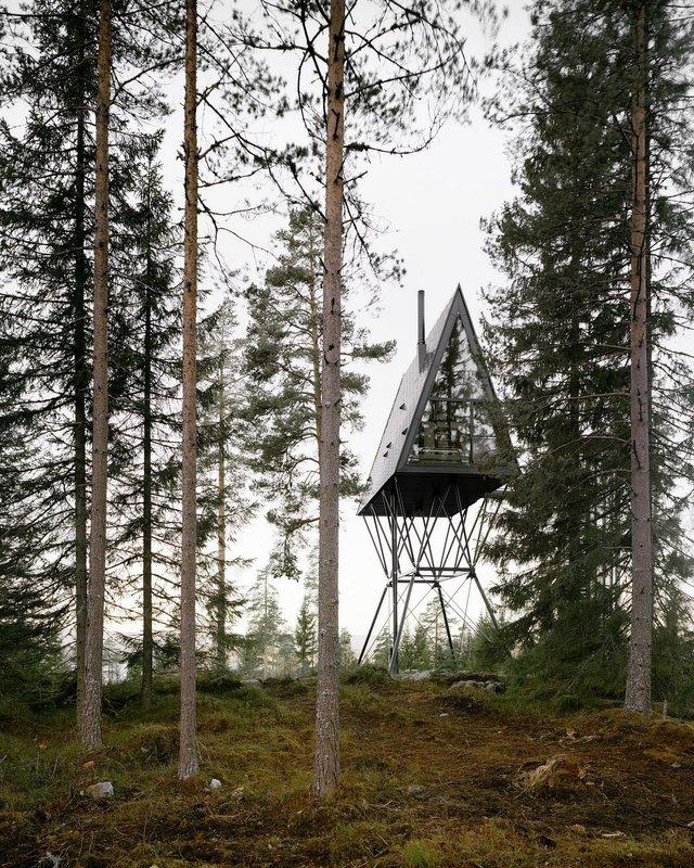 Посеред лісу в Норвегії з'явились ідеальні будиночки для інтровертів: фото - фото 342816