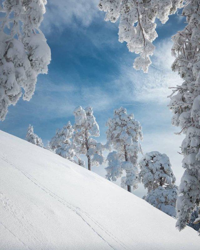 Подорож Швейцарією у різні пори року: захопливі фото - фото 343391