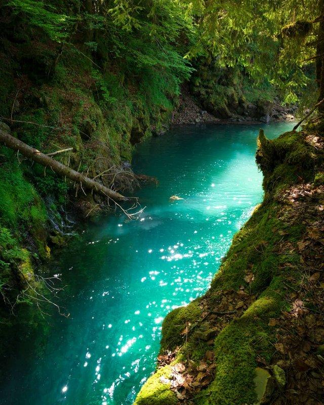 Подорож Швейцарією у різні пори року: захопливі фото - фото 343405