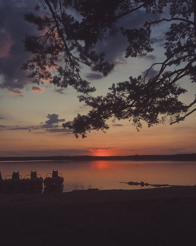 Відпочинок на Шацьких озерах 2020: що подивитись, як доїхати, ціни на житло - фото 344489