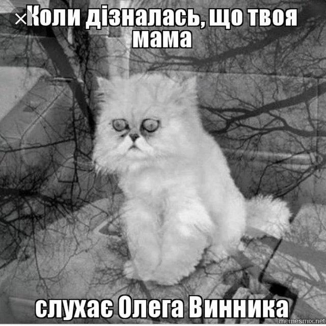 Олег Винник – повелитель вовчиць: найприкольніші меми з іменинником - фото 344662