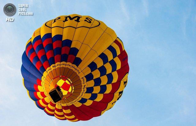 Як у Франції проходить яскравий фестиваль повітряних куль - фото 344702