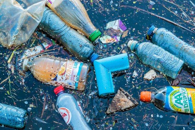Чорне море кишить пластиком: науковці - фото 344801