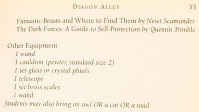 Рідкісну книжку про Гаррі Поттера продали за шалені гроші - фото 345133