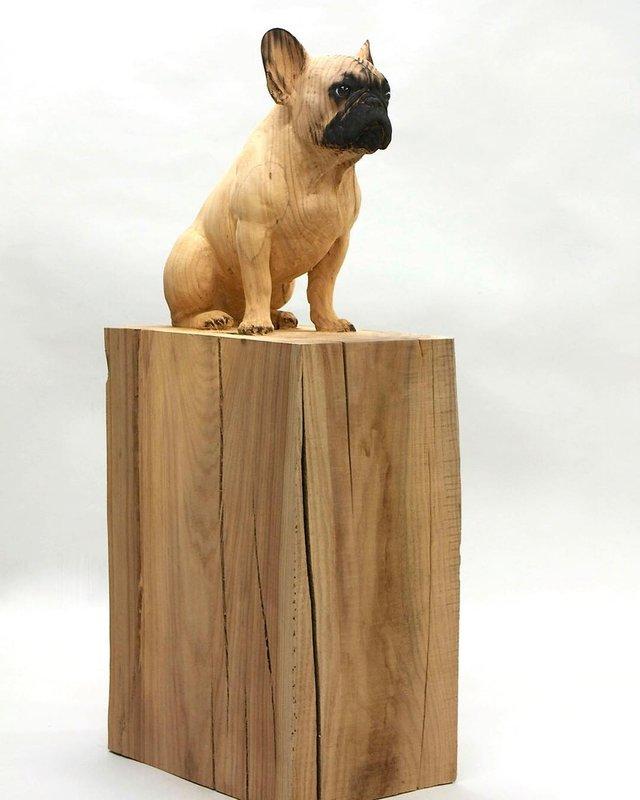 Іспанець вирізає з дерева реалістичних тварин: вражаючі фото - фото 345668