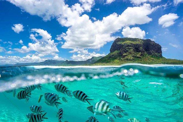 Відпочинок на морі 2019: релакс у екзотичному Маврикії - фото 345915