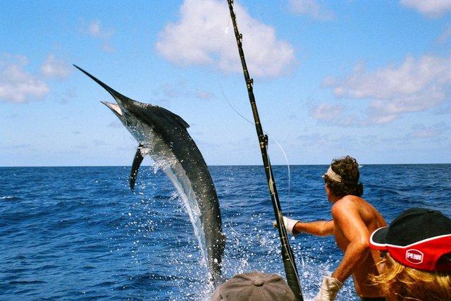 Відпочинок на морі 2019: релакс у екзотичному Маврикії - фото 345921