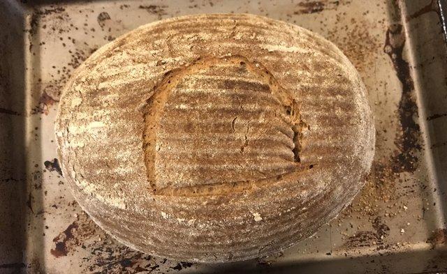 Фізик випік хліб з давньоєгипетських дріжджів: їм чотири тисячі років - фото 346108