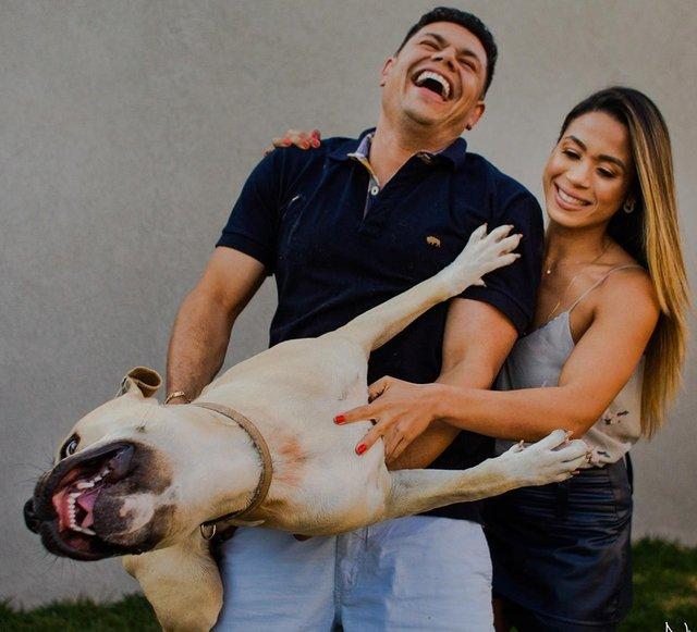 Кумедний пес зіпсував фотосесію закоханої парочки: але вийшло дуже круто! - фото 346843