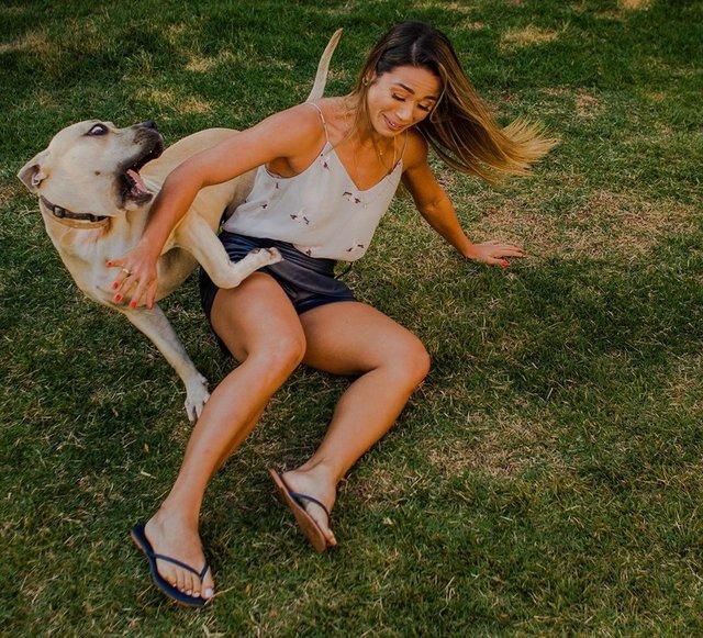 Кумедний пес зіпсував фотосесію закоханої парочки: але вийшло дуже круто! - фото 346845