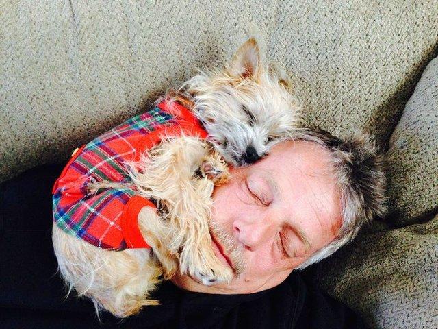 Ці собаки не знають, що таке особистий простір: кумедні фото - фото 348245