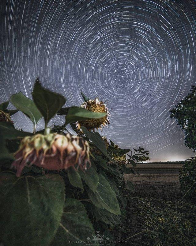 Космос поряд: вражаючі фото нічного неба з Землі - фото 348290
