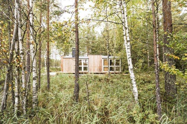 Фінські студенти власноруч створили ідеальний дім у лісі: вражаючі фото - фото 349183