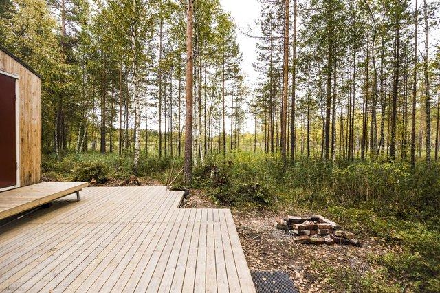 Фінські студенти власноруч створили ідеальний дім у лісі: вражаючі фото - фото 349188
