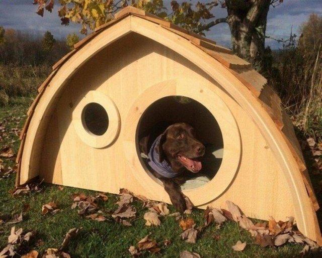 Ці будки для собак виглядають краще, ніж ваш дім - фото 349254