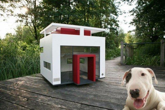 Ці будки для собак виглядають краще, ніж ваш дім - фото 349259