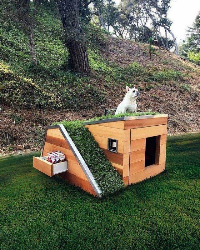 Ці будки для собак виглядають краще, ніж ваш дім - фото 349262
