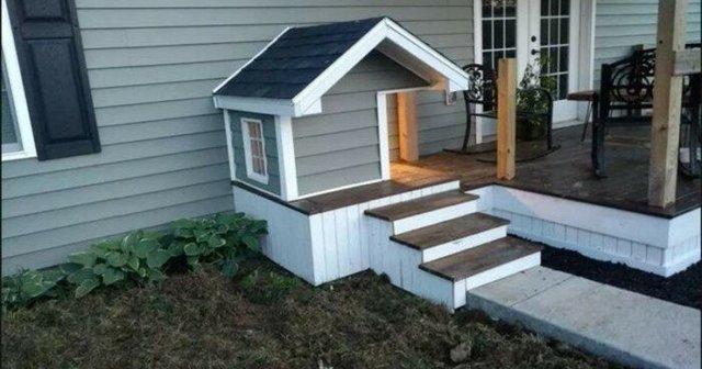 Ці будки для собак виглядають краще, ніж ваш дім - фото 349263