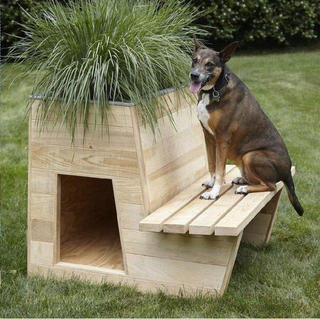 Ці будки для собак виглядають краще, ніж ваш дім - фото 349265