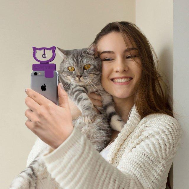 Гаджет допоможе робити ідеальні селфі зі своїм котом - фото 349327
