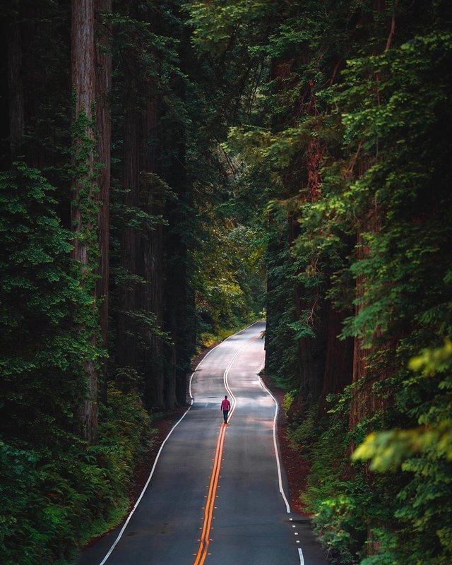 Фото цього американця надихають мандрувати світом: яскраві кадри - фото 349395