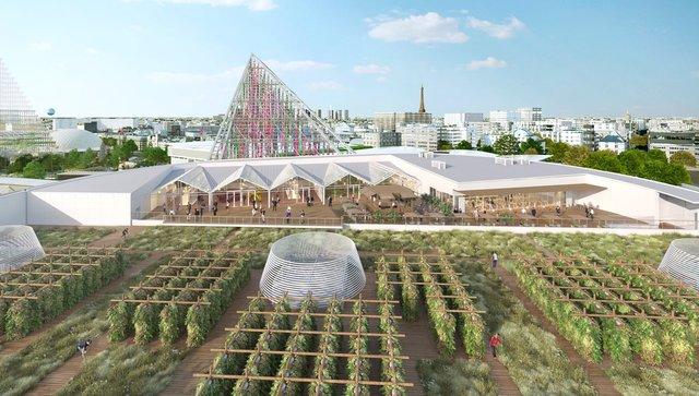 На даху однієї з будівель Парижу відкриють найбільший у світі город - фото 349710