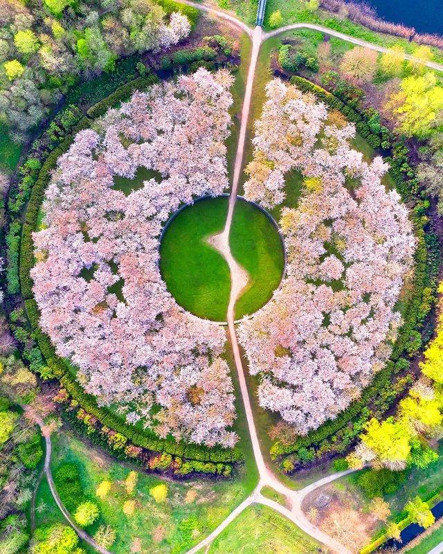 Вражаючі фото світу з висоти пташиного польоту: яскраві кадри - фото 350660