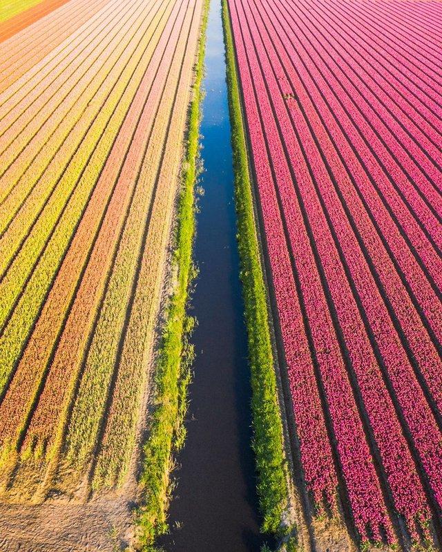 Вражаючі фото світу з висоти пташиного польоту: яскраві кадри - фото 350667
