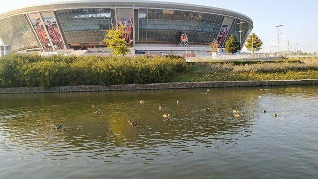 Як виглядає Донбас Арена через 10 років після відкриття - фото 351248